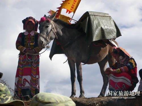 忆滇藏茶马古道马帮生活