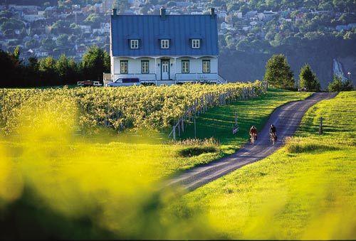 古老的乡村路