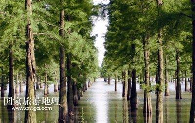 这是风景秀丽的庐江县柯坦镇山村居民在