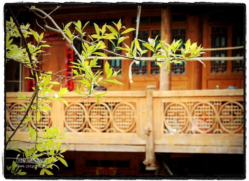 寨中春意盎然,风景秀丽。 (3)