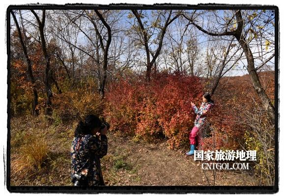"""扎兰屯市五彩缤纷赏秋色""""游人如织""""(图)"""