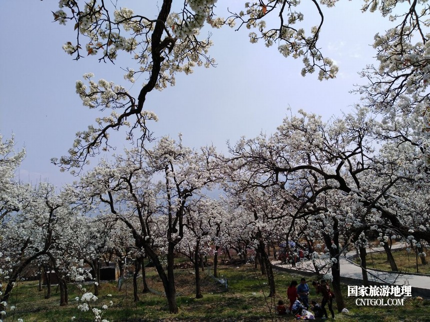 2 云南会泽水城梨园春天的乐园