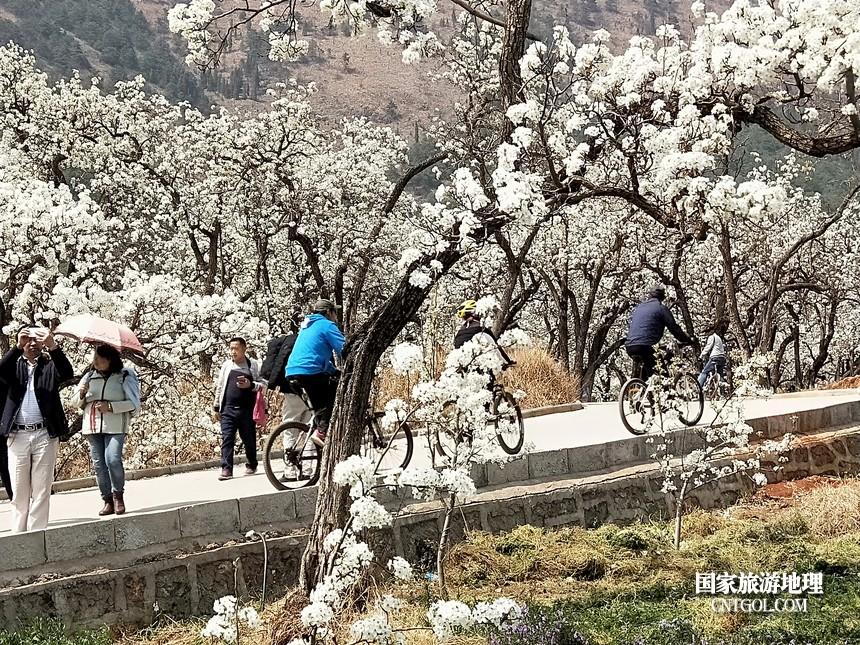 5 云南会泽水城梨园春天的乐园