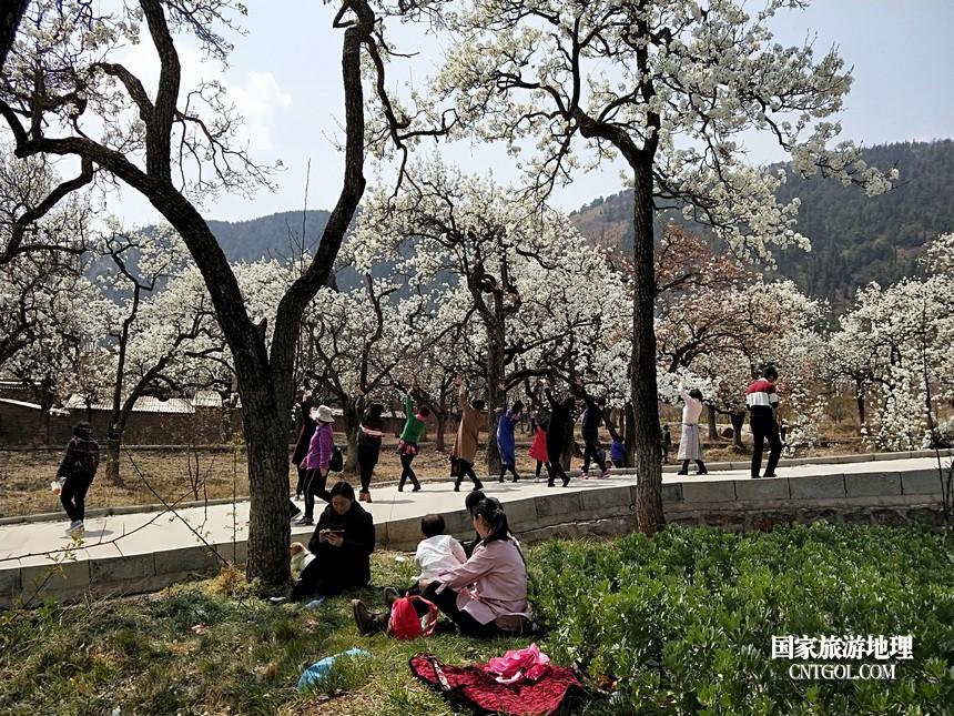6 云南会泽水城梨园春天的乐园