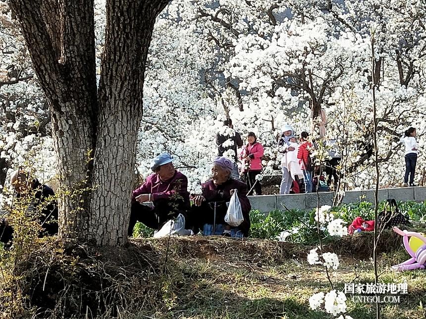 18 云南会泽水城梨园春天的乐园