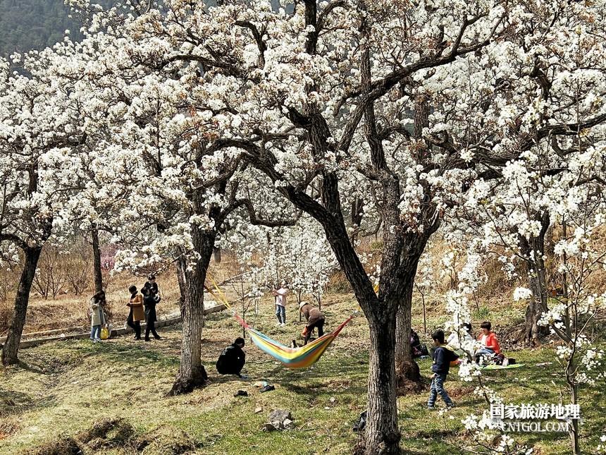 23 云南会泽水城梨园春天的乐园