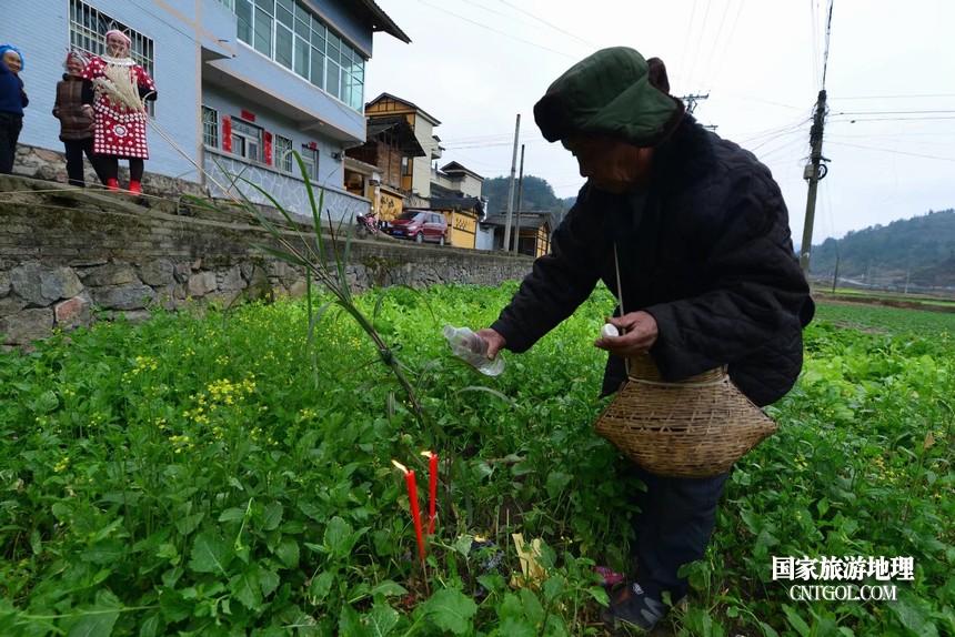 赖洞坝:春暖花开好待客
