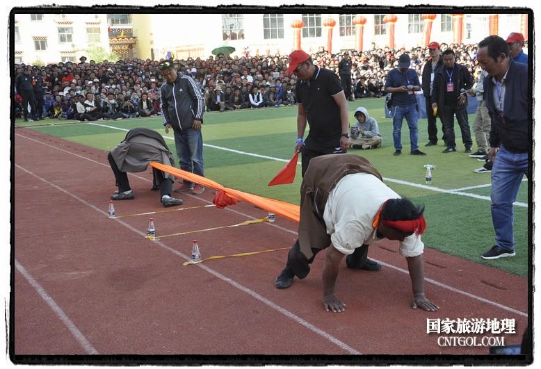 """""""大象拔河"""",又称""""押加"""",是藏族人民喜爱的一项民族传统体育运动,在西藏已有百年的历史。"""