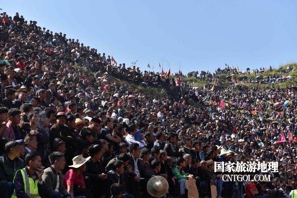 11月3日,贵州省从江县下江镇巨洞斗牛塘40头牛王争霸,图为斗牛现场一角。
