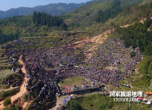 11月3日,贵州省从江县下江镇巨洞斗牛塘40头牛王争霸,图为牛塘全景。