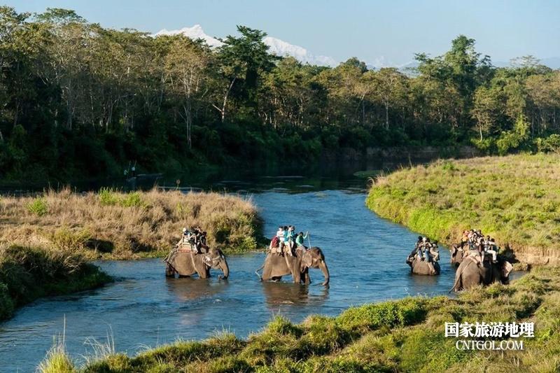 """""""人文天堂""""加德满都/国家公园内的大象观光旅游"""