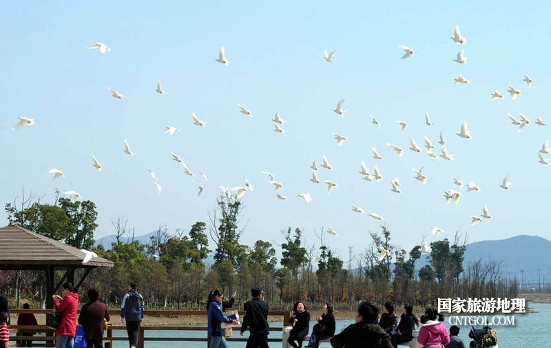 苏州太湖东山岛上的生态美景