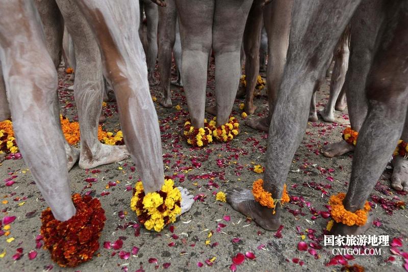 印度人救赎灵魂的大壶节/脚上的花环
