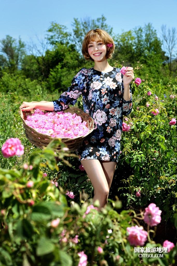 在那玫瑰花盛开地方保加利亚/采花姑娘