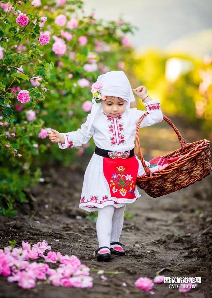 在那玫瑰花盛开地方保加利亚/花田里的小女孩