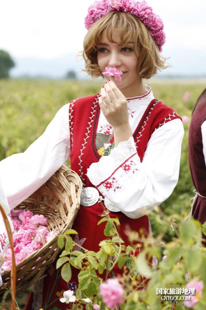 在那玫瑰花盛开地方保加利亚/闻香