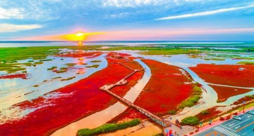 玩转盘锦红海滩!体验多彩旅行