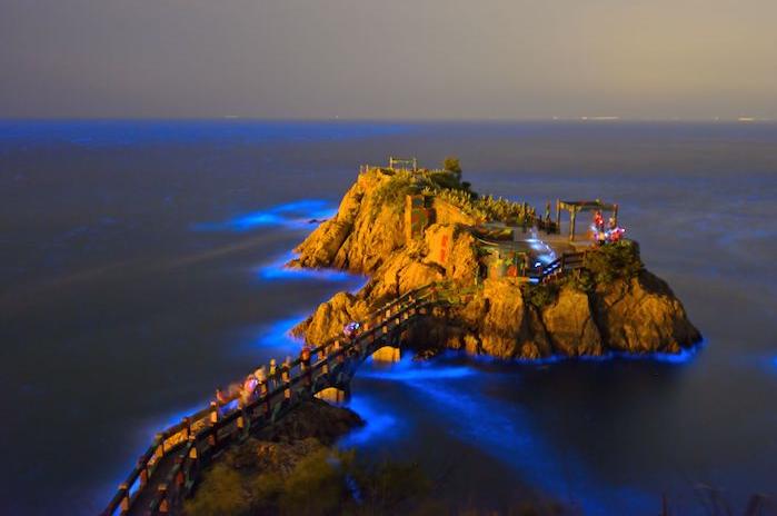馬祖「藍眼淚現象」CNN列為世界15大奇景之一