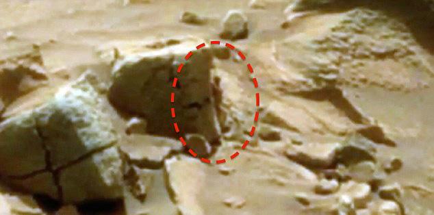 """网友称""""好奇号""""火星车拍到火星人图片"""