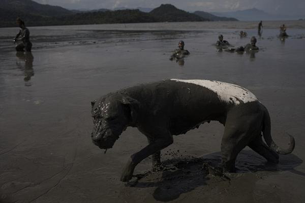 巴西海滩泥浆节参与者全身涂满泥浆酣畅狂欢