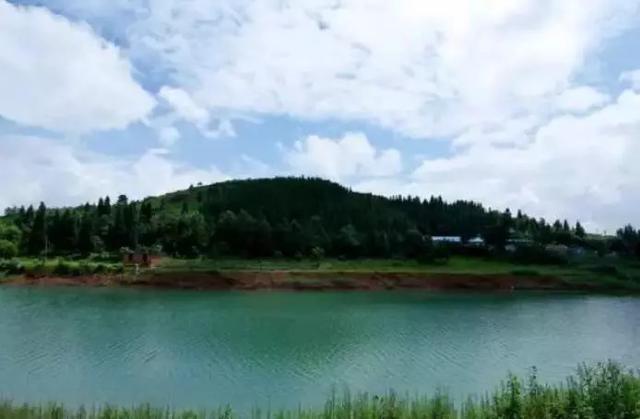 首批国家森林小镇建设试点名单公布,贵州3地入选