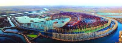 安徽:保护修复湿地生态 建设绿色江淮美好家园_最新林业信息