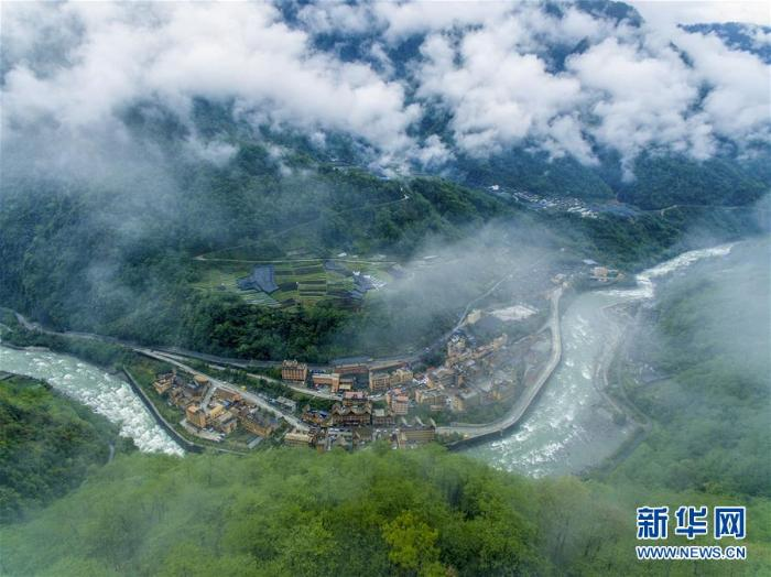 """满目青山变成""""绿色银行""""_最新林业信息"""