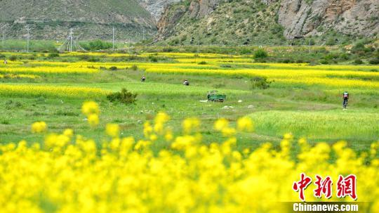飞驰山水间 西藏拉萨举行楚布沟山地自行车越野赛