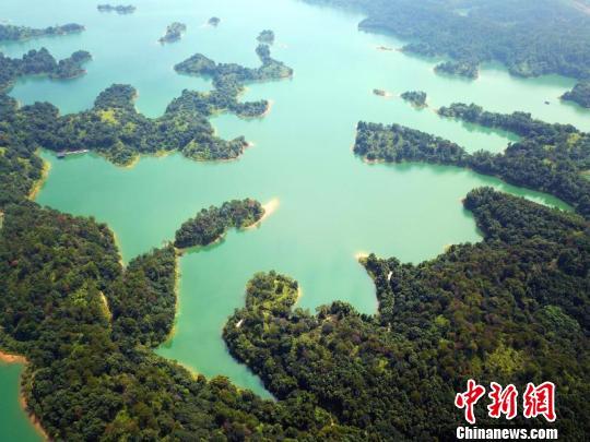 廣東森林生態效益總值達5413.7億元 20年增近4倍