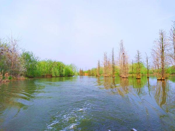 和谐湿地大湖风光