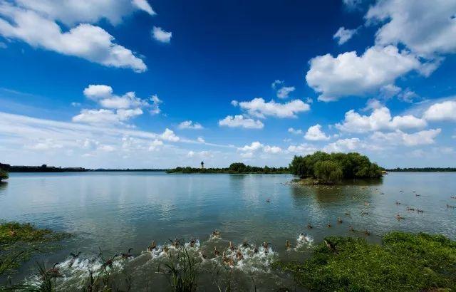 素秋九月|发现一个自然宝藏地,感受溱湖风景区的慢生活
